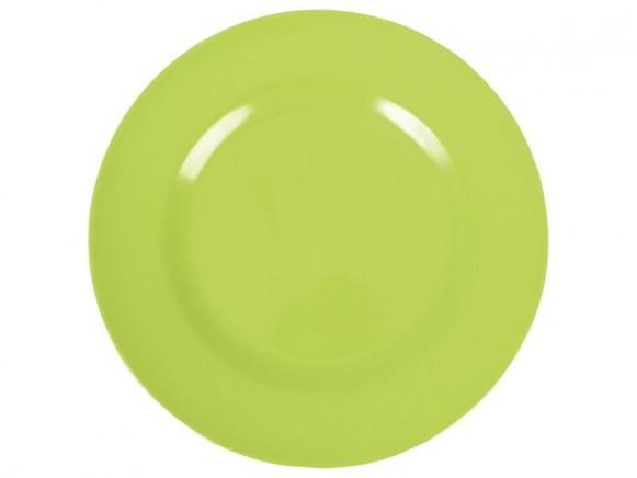 Kleiner RICE Teller grün