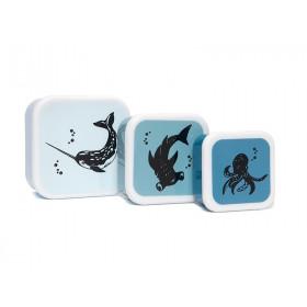 Petit Monkey Lunchbox Set MEERESTIERE