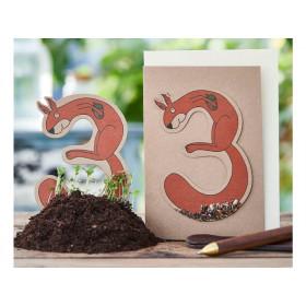 DieStadtgärtner Geburtstagskarte mit Saatstecker EICHHÖRNCHEN 3