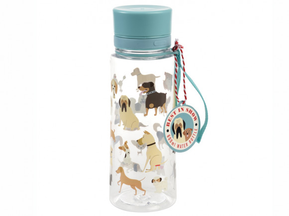 Rex London Water Bottle BEST IN SHOW