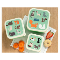Rex London 3 Snack Boxes NINE LIVES