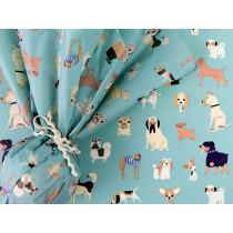 Rexinter Tissue Paper BEST IN SHOW