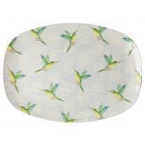 RICE Rectangular Plate HUMMINGBIRD