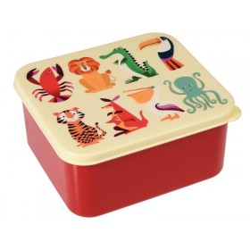 Lunchbox Colourful Creatures