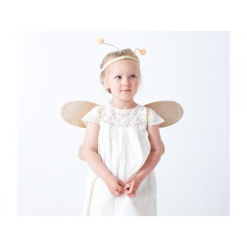 Meri Meri Dress up Kit Butterfly