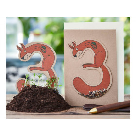 DieStadtgärtner Birthday Greeting Card SQUIRREL 3
