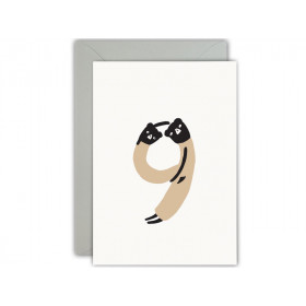 Ted & Tone Greeting Card Happy 9th Birthday